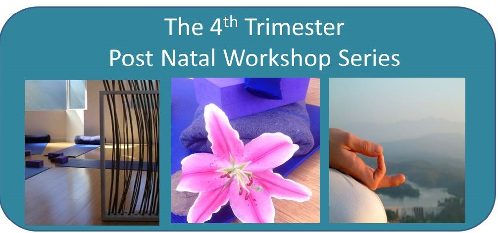 The 4th Trimester Post Natal Workshop Series